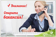 Менеджер по продажам товара интернет магазина на дому